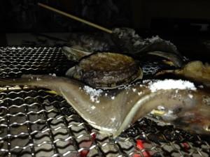 ・夜は瀬戸内の海鮮づくしで・・・・ 「かます」「アワビ」「車海老」「蠣」「しず」「鯛飯」